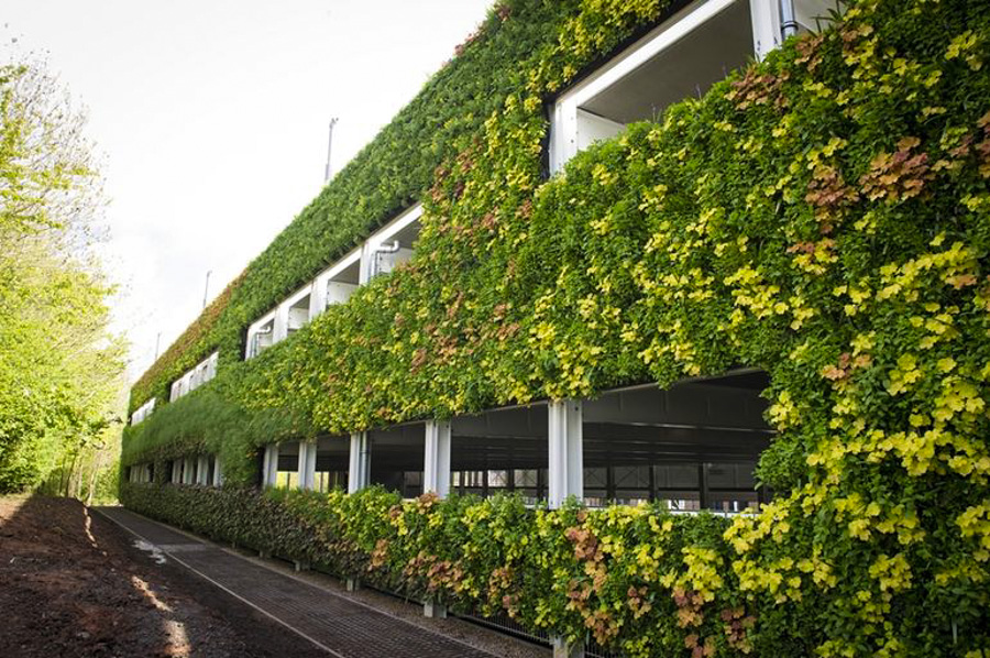 europe s largest living wall contains 97 000 plants. Black Bedroom Furniture Sets. Home Design Ideas