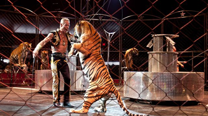 1_Netherlands ban circus animals