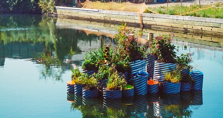 1_polluted waterway tiny floating garden