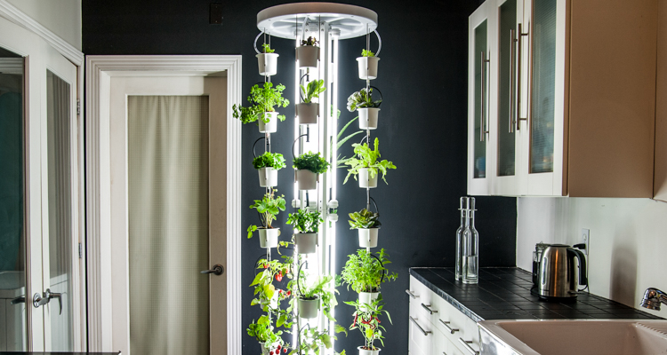 1_vertical farm