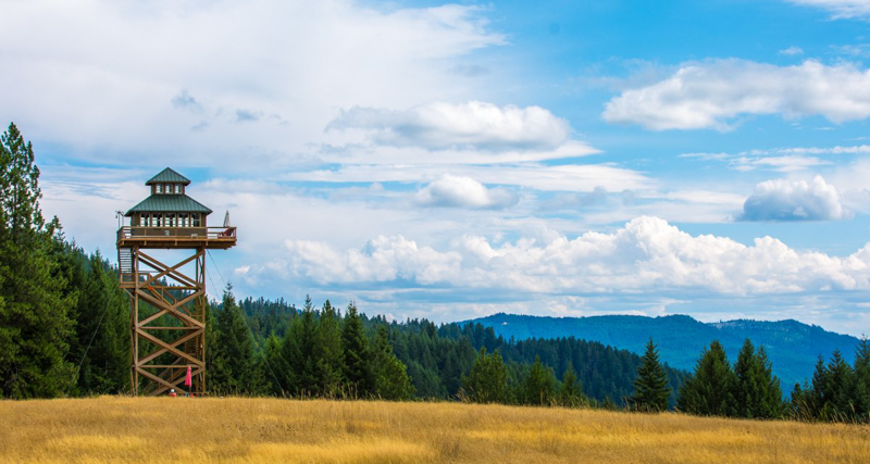 1_fire lookout_Oregon Forest