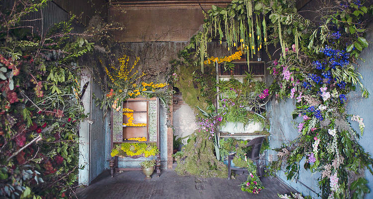 Florists Turned An Abandoned House Into A Beautiful Living