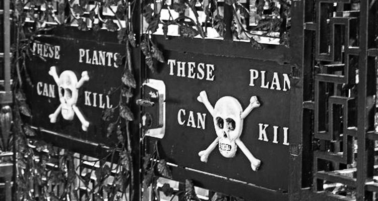 1_Poison Garden