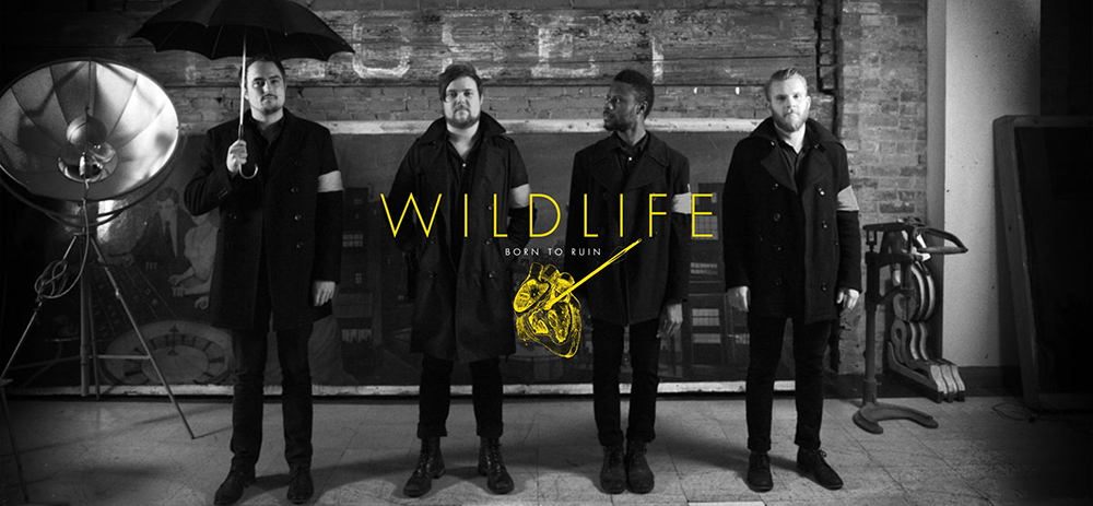 Wildlife-band1