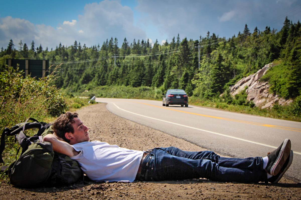 Hitchhiking Isn't Extinct_Plaid Zebra