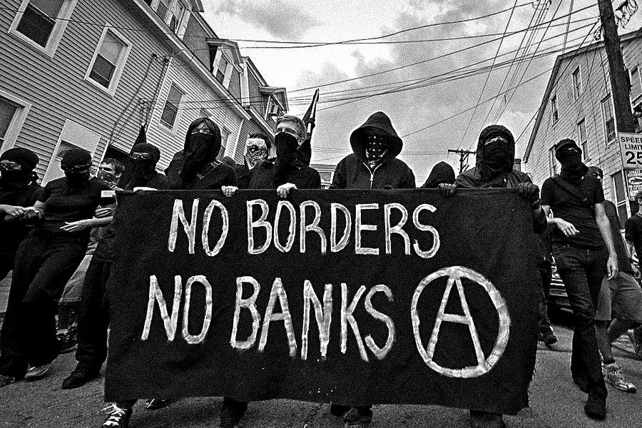 Anarchy_Plaid Zebra