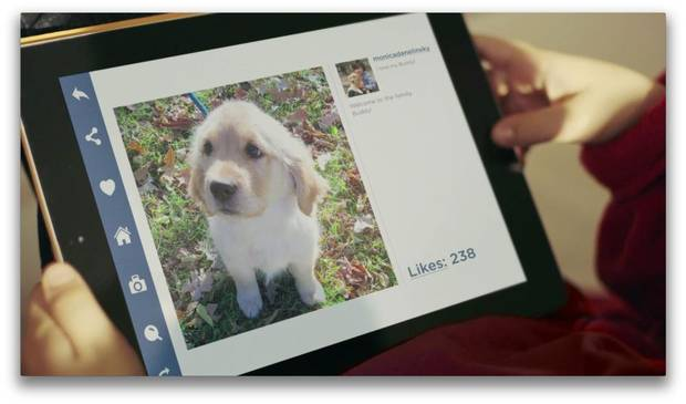 Puppy Swap App