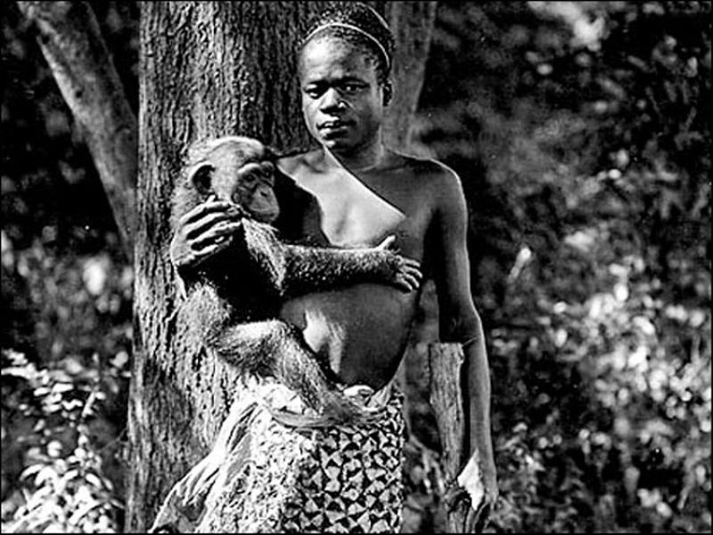 மனித உயிரியல் பூங்கா  2_Human-zoo
