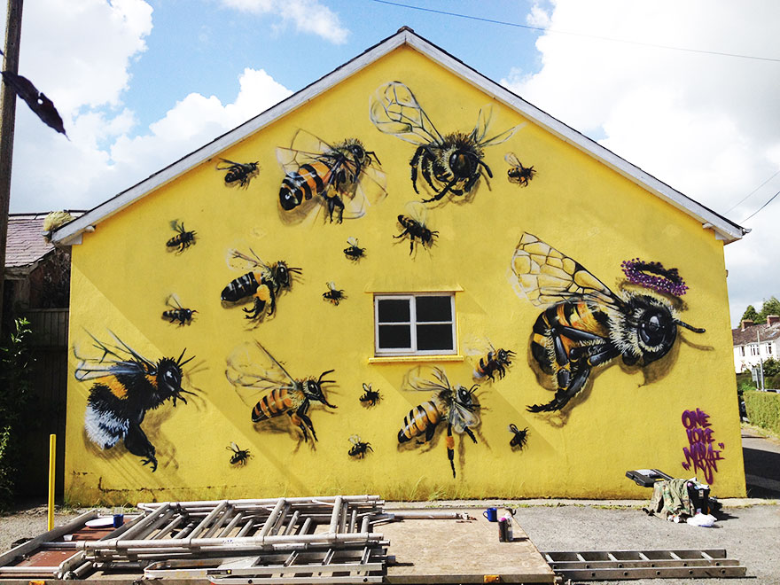 1_Honey Bee Graffiti