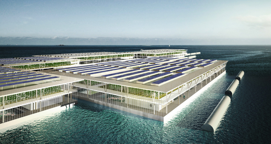 1_solar floating farm