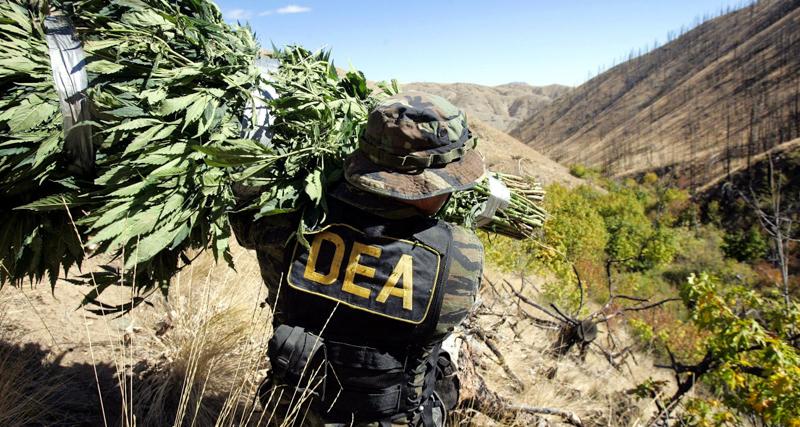 1_18 states allow medical Marijuana