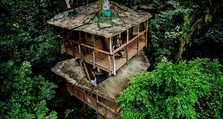 1_tree house community in Costa Rica