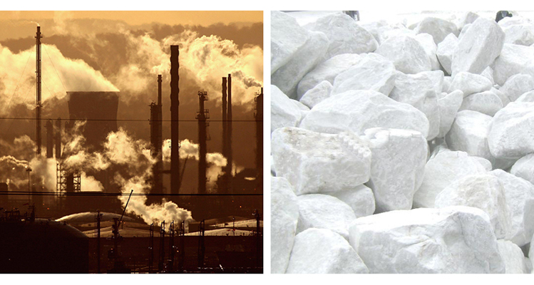 1_CO2 turned to stone
