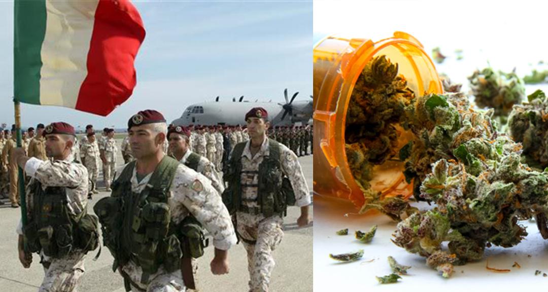 1_Italian military growing weed