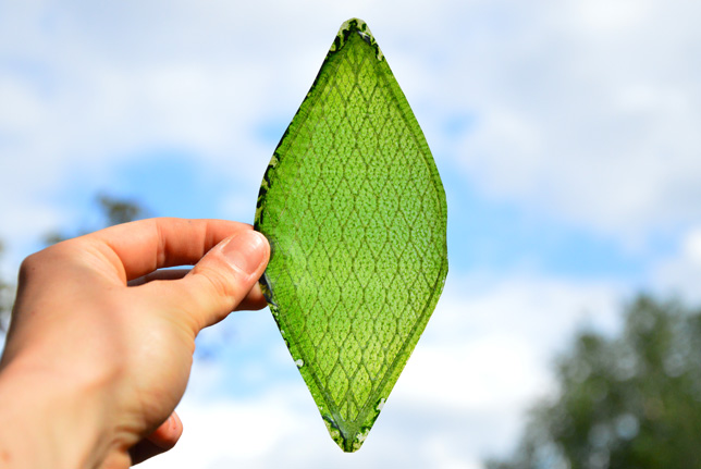 1_man-made biological leaf