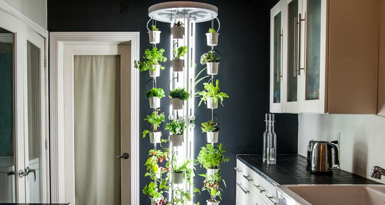 1_vertical farm