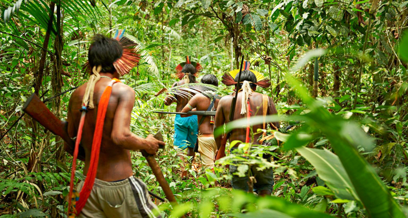 1_Peru is building a jungle conservation