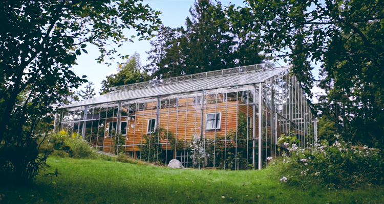 Couple Builds Beautiful Glass Greenhouse Around Entire