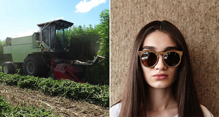 1_hemp sunglasses