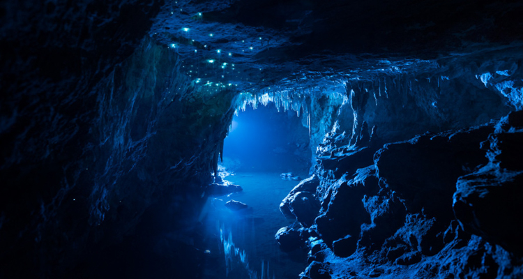 1_Breathtaking time-lapse of glowworm caves