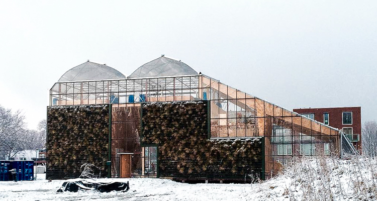 1_sustainable and edible green-house home