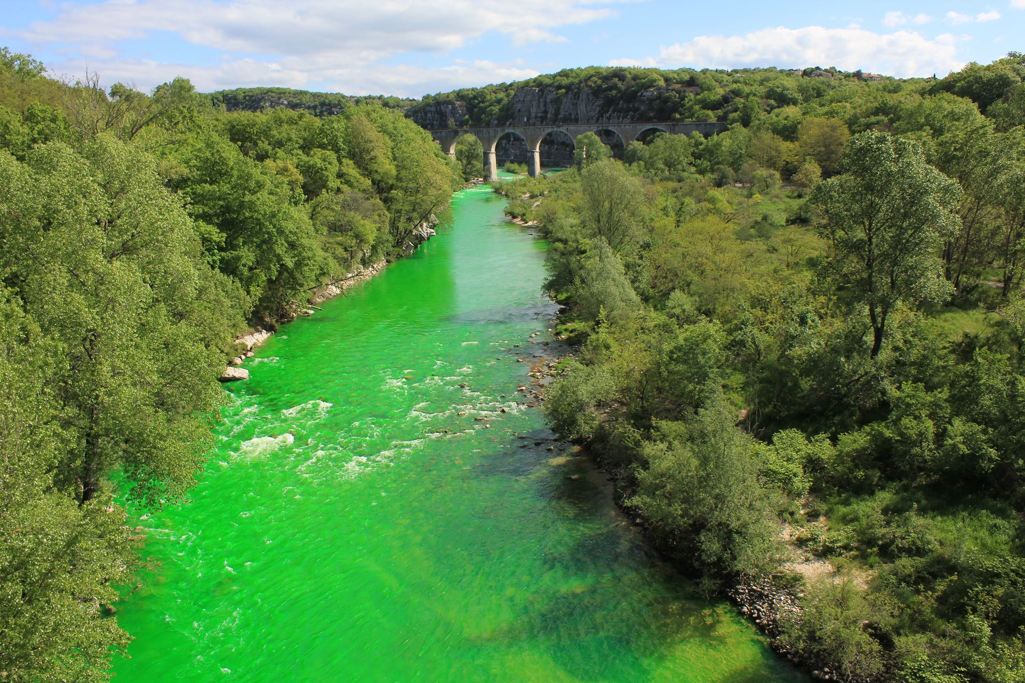 1_Environmentalists are dying France's rivers green