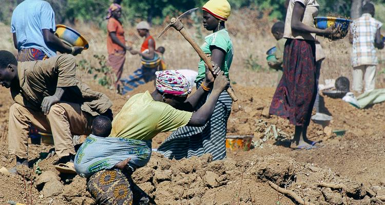1_environmental destruction modern slavery