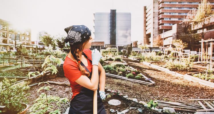1_guerrilla gardener
